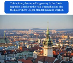 Czech keyhole culture answer